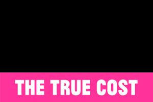 the true cost netflix. Black Bedroom Furniture Sets. Home Design Ideas